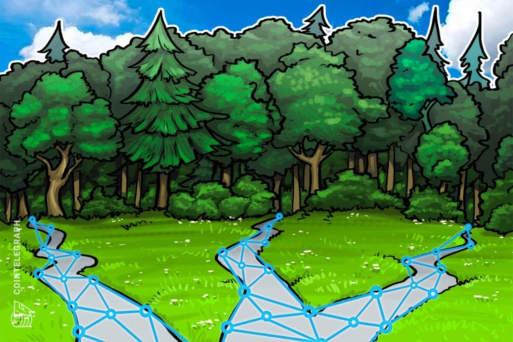 Spain to Develop Blockchain Tech Application for Transparency in Forestry Industry